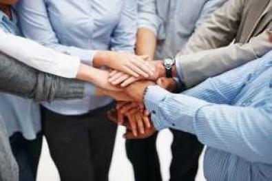 5-те типа личности, от които всяка компания има нужда