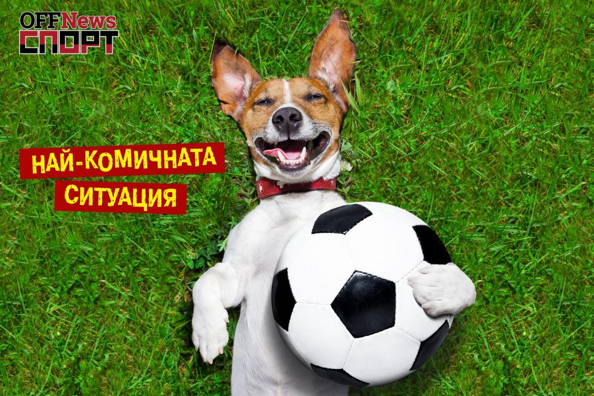 Спорт OFFNews